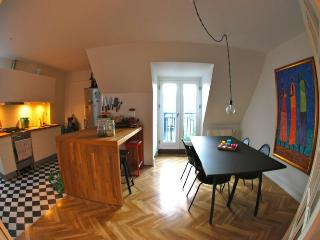 Modern Copenhagen penthouse apartment near Forum Metro - Copenhagen Region vacation rentals