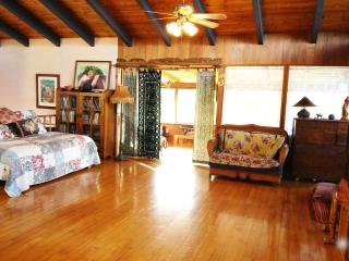 Magical Mapuana with Ocean View - Kealakekua vacation rentals