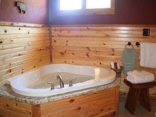 Alamo Springs:The Barn - Texas Hill Country vacation rentals