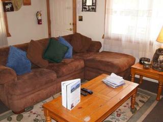 Bear Trap Cabin - Big Bear Area vacation rentals