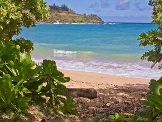 Moloaa Bay Villa - Anahola vacation rentals