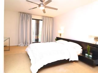 Luxury Townhome-Unbeatable Location-Great Reviews! - Chicago vacation rentals
