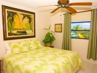 Master 1 Bedroom - $135 2/24-3/2 @ Sapphire Village Free in Unit WiFi - East End - rentals