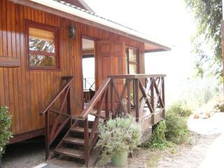 Forest Heart - Wood Cabin on Knysna Forest Edge - Knysna vacation rentals