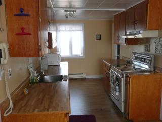 Home From Away - 3 bdrm house  beautiful sea views - Newfoundland and Labrador vacation rentals