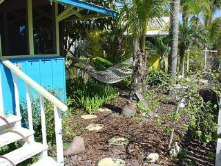 Blue Dolphin Cottage - Sarasota vacation rentals