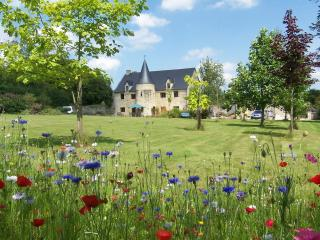 Nice 3 bedroom B&B in Picauville - Picauville vacation rentals