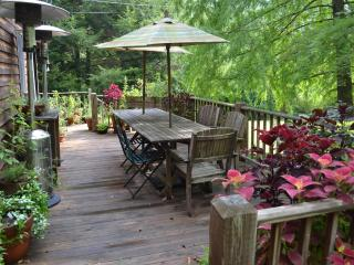 Butterfly Farm Blue Ridge Mountains Hot Springs NC - Hot Springs vacation rentals