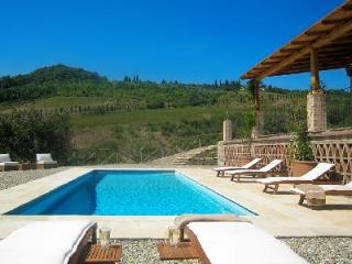 Countryside Capanna Cerreto nestled in 50 acres of vineyards in gated area with saline pool & staff - Chianti vacation rentals