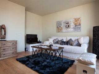 BCN Rambla Catalunya Provenzal Penthouse - Barcelona vacation rentals