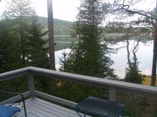 Cozy 1 bedroom House in Mount Desert - Mount Desert vacation rentals