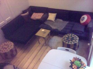 Cosy Copenhagen apartment close to the canals - Copenhagen Region vacation rentals