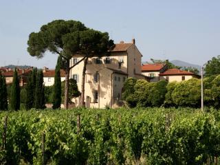 Villa in Tuscany in a Small Village - Villa Giovi - 6 - Arezzo vacation rentals