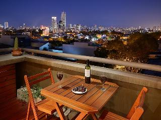 ***** P E N T- H O U S E *****                      GREAT   CITY    VIEWS               Palermo Hollywood - Buenos Aires vacation rentals