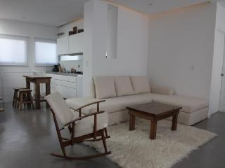 2 Bedroom Apartment in the Heart of Palermo Soho - Buenos Aires vacation rentals