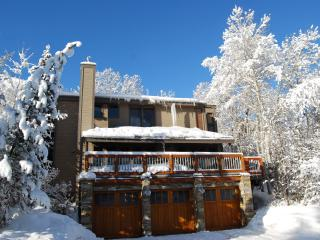 Ski In-Ski Out Condo in Crescent Ridge - Park City vacation rentals