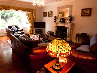 Luxury house 5-10 mins walk Killarney town centre - Killarney vacation rentals