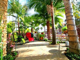 Windansea Beach Tropical House 1/2 block to Beach - La Jolla vacation rentals