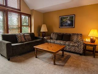 Quiet wooded location, close to village and slope, 3 bdrm - Whistler vacation rentals