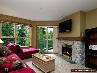 Aspens #328, 1 Bdrm, Ski-in Ski-out, Serene Forest View, Free Wifi - Whistler vacation rentals