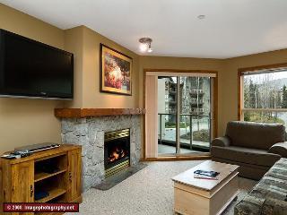 Aspens #242, Spacious 2 Bdrm, Ski-in Ski-out, Free Wifi, BBQ, sleeps up to 8 - Whistler vacation rentals