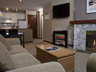 Aspens #216, Updated 1 Bdrm, Ski-in Ski-out, Serene Forest View, Free Wifi - Whistler vacation rentals