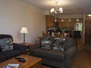 Ski-in, ski-out, very spacious, newly renovated 1 bdrm - Whistler vacation rentals
