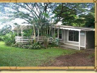 Hana's Tradewind Cottage - Hana vacation rentals