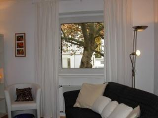 Vacation Apartment in Heidelberg - convenient, fully furnished, bright (# 2227) - Heidelberg vacation rentals