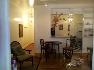 FABULOUS STAY  FIFTH AVE CENTRAL PARK HUGE APT WOW - New York City vacation rentals