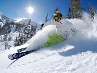 Voted Lake Tahoe Best Luxury Resort Condo 50% off - Shaver Lake vacation rentals