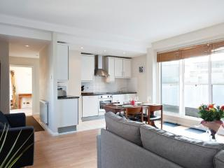 London City Penthouse Apartment, Zone 1 w/WIFI - London vacation rentals