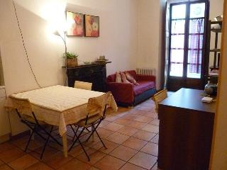 Sotto la Mole-Apt in Turin center short periods - Turin vacation rentals