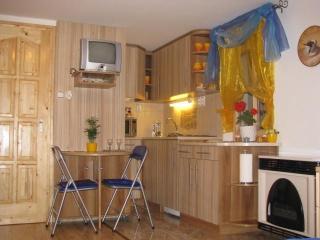Self-catering Apartment by Hatvan;Budapest  55 min - Hatvan vacation rentals