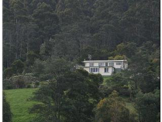 The Eagles View - Eaglehawk Neck vacation rentals