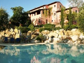 Rustic Le Rondini villa with pool, superb outdoor space, mountain views and close to Montopoli - Santa Lucia Pontedera vacation rentals