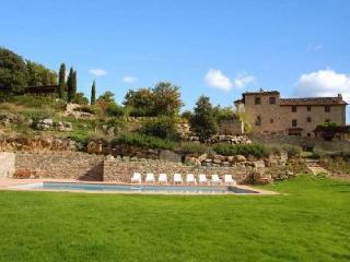 Peaceful Il Colombaio boasts vineyard views, pool and lush gardens - Chianti vacation rentals