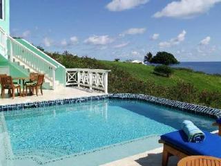 La Viridian - Lovely villa with salt water pool & beautiful ocean views - East End vacation rentals