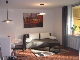 Vacation Apartment in Stein - 484 sqft, freshly renovated, central, comfortable, quiet (# 2240) - Dietenhofen vacation rentals