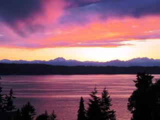 Olympic View Cottage - Seattle vacation rentals