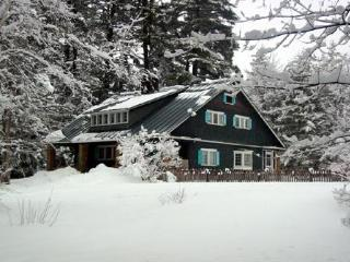 Private Mountain Retreat on 83 Acres - Perkinsville vacation rentals