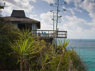 Sea Cliff ocean front vacation home - Tarpum Bay vacation rentals