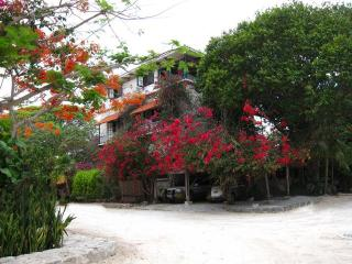Casa Tambuuco Bed & Breakfast - Playa del Carmen vacation rentals