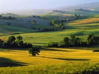 Tuscany, Siena - Farmhouse I Pianelli - Murlo vacation rentals