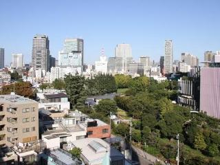 Roppongi Amazing View Apartment 1 min to station - Minato vacation rentals