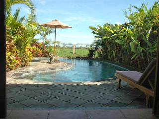 Orchid Cottage Ubud (pool, 2 brm, ricefield view) - Ubud vacation rentals