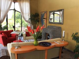 House-shown yearly on the House and Garden Tour! - San Miguel de Allende vacation rentals