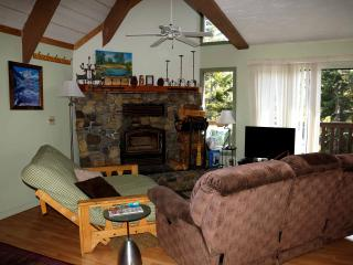 "Mammoth Mountain Condo Rental near ""The Village"" - Mammoth Lakes vacation rentals"