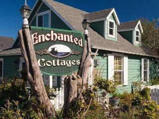 Cozy vacation cottages - Long Beach WA Coast - Long Beach vacation rentals