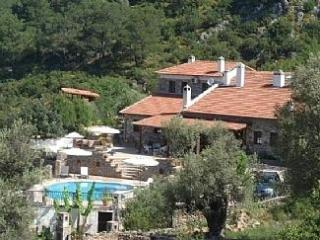 Villa Tas Evi - Kayakoy vacation rentals